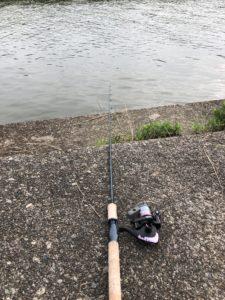 坂井市兵庫川で釣り